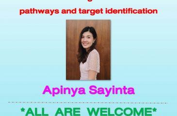 Proposal Apinya