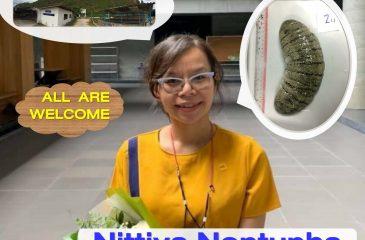 Nittiya's Thesis Defense